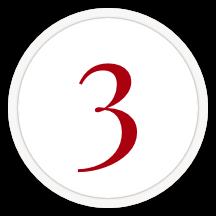 Step 3   Monaco Associates Process